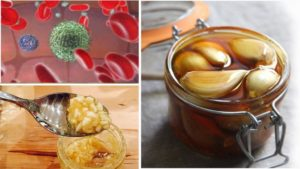Eat Garlic and Honey on Empty Stomach for Only 7 Days and THIS Will Happen to Your Body!
