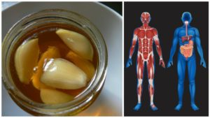 For Seven Days, Eat Honey And Garlic And See Good Results In The Body